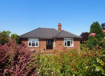 Thumbnail 3 bed detached bungalow for sale in Watton Road, Barford, Norwich