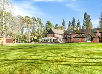 Thumbnail 8 bedroom detached house for sale in Wellingtonia Avenue, Crowthorne, Berkshire