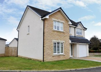 Thumbnail 4 bed detached house for sale in The Spey At Bellside Brae, Cleland