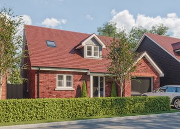 Thumbnail 3 bed detached bungalow for sale in Clay Lane, Fishbourne, Chichester