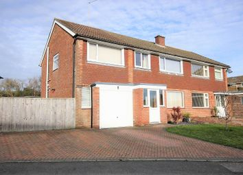 Thumbnail 5 bed semi-detached house for sale in Chestnut Way, Dorchester