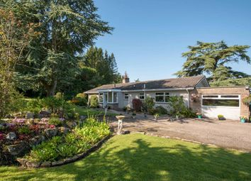 Thumbnail 4 bed bungalow for sale in Stablebrae, Durris, Banchory, Aberdeenshire