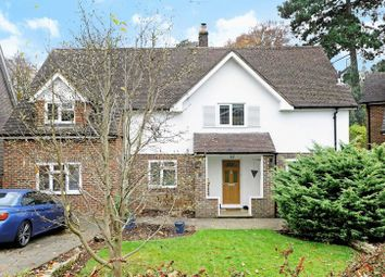 Thumbnail 4 bed detached house to rent in Summerhouse Close, Godalming