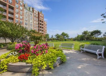 Thumbnail 3 bed apartment for sale in Oceana Drive E, Brooklyn, N.Y.