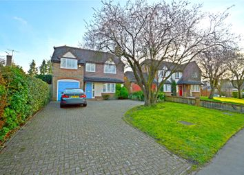 Thumbnail 4 bed detached house for sale in Selborne Road, Croydon
