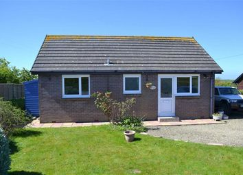 Thumbnail 2 bed detached bungalow for sale in Maenygroes, New Quay, Ceredigion