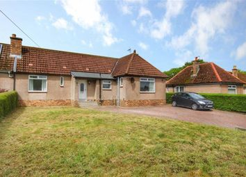 Thumbnail 4 bed semi-detached house for sale in 16, Bonfield Road, Strathkinness, Fife