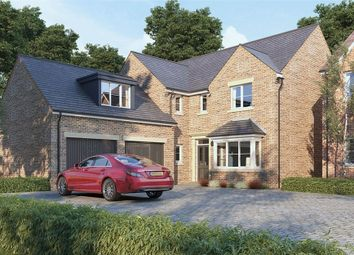 Thumbnail 5 bed detached house for sale in The Dorchester At Oak Tree Park, Stancliffe Homes, Shireoaks, Worksop, Nottinghamshire
