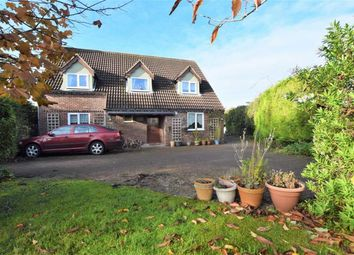 Thumbnail 4 bed property for sale in South Road, North Somercotes, Louth