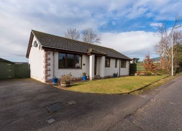 Thumbnail 3 bed bungalow for sale in Millar Lane, Newmill, Keith