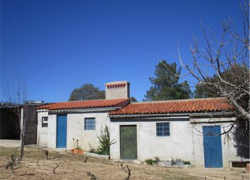Thumbnail Farm for sale in Castelo Branco, Castelo Branco (City), Castelo Branco, Central Portugal