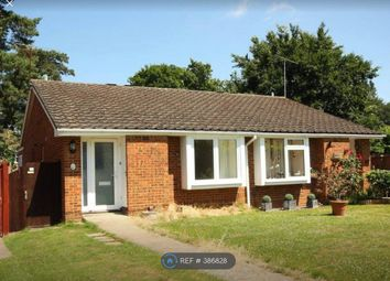 Thumbnail 2 bed bungalow to rent in Denvale Walk, Woking