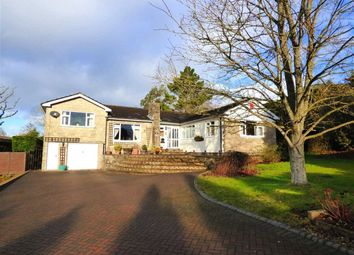 Thumbnail 5 bed detached bungalow for sale in Willow Court, 1 Pwllmeyric Close, Chepstow