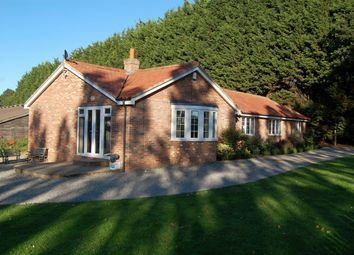Thumbnail 3 bed detached bungalow to rent in Willingale Road, Fyfield, Ongar