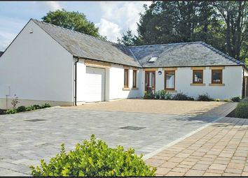 Thumbnail 3 bed detached bungalow for sale in 1 High Meadow, Castle Carrock, Brampton, Cumbria
