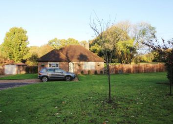 Thumbnail 3 bed detached bungalow to rent in Pickhurst Road, Chiddingfold, Godalming