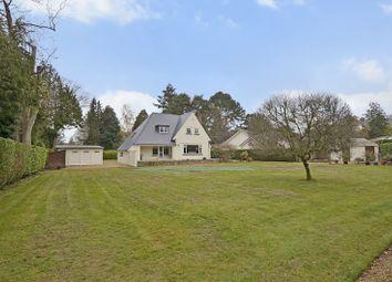 Thumbnail 4 bed detached house for sale in Moorside Road, West Moors, Ferndown