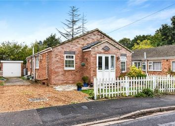 Thumbnail 3 bed detached bungalow for sale in Broomsquires Road, Bagshot, Surrey