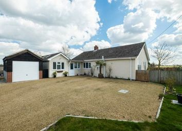 Thumbnail 3 bed bungalow for sale in Beccles, Suffolk, .