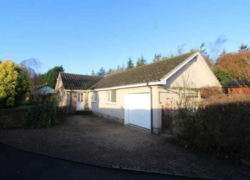Thumbnail 3 bedroom detached bungalow for sale in Warenford, Belford, Northumberland