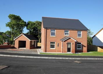Thumbnail 4 bed detached house for sale in Maesglasnant, Cwmffrwd, Carmarthen, Carmarthenshire