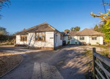 Thumbnail 4 bed detached bungalow for sale in Homestead Road, Medstead, Alton, Hampshire