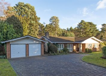 Thumbnail 3 bed bungalow for sale in Spinney Close, Cobham, Surrey