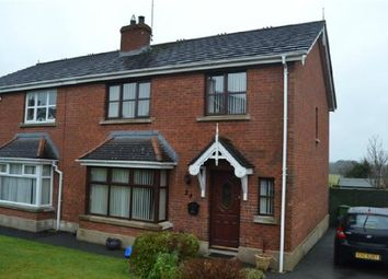 Thumbnail 4 bed semi-detached house to rent in 24 Whitehorn Brae, Kinallen, Dromore