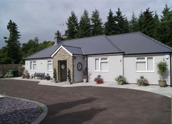 Thumbnail 4 bed bungalow for sale in Viney Hill, Lydney