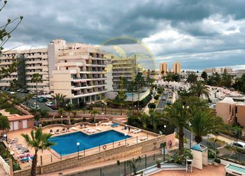 Thumbnail Studio for sale in Las Americas, Canary Islands, 38660, Spain