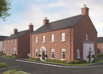 Thumbnail 3 bed semi-detached house for sale in 14, Temple Hall, Templepatrick