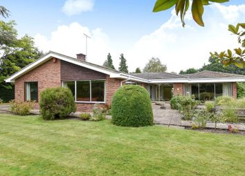 Thumbnail 4 bed detached bungalow for sale in Heathfield Road, Woking