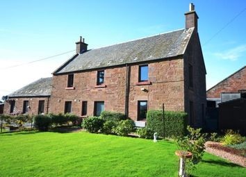 Thumbnail 3 bed semi-detached house to rent in Meigle, Blairgowrie