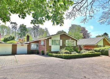 Thumbnail 2 bed bungalow for sale in Nepcote Lane, Nepcote, Findon, West Sussex