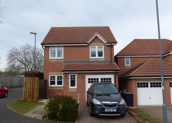 Thumbnail 3 bedroom detached house for sale in Potterburn Close, Stanley