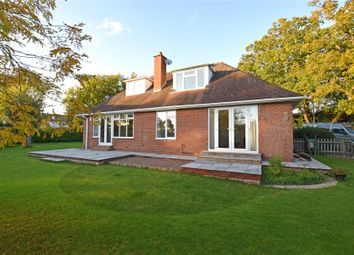 Thumbnail 4 bed bungalow to rent in Exton, Exeter