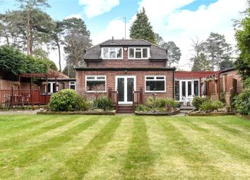 Thumbnail 4 bed detached house to rent in Pine Tree Hill, Pyrford, Woking