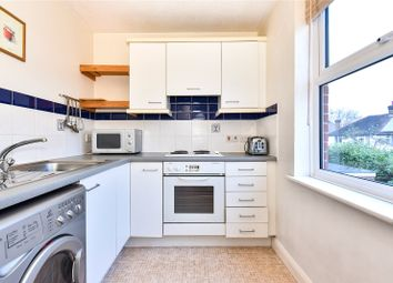 Thumbnail Studio for sale in Paxton Road, Forest Hill, London