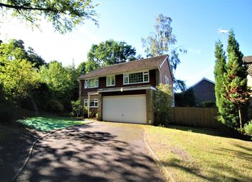 Thumbnail 4 bedroom detached house to rent in Golf Drive, Camberley