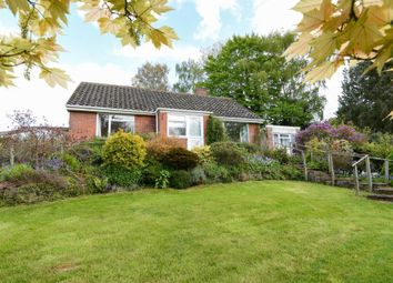 Thumbnail 3 bed detached bungalow for sale in Upper Hill, Leominster