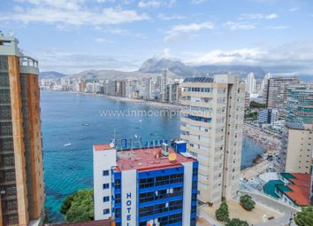 Thumbnail Studio for sale in Benidorm, Benidorm, Benidorm