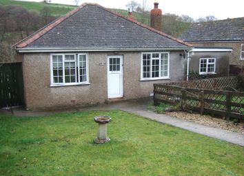 Thumbnail 2 bed detached bungalow to rent in Uploders, Bridport