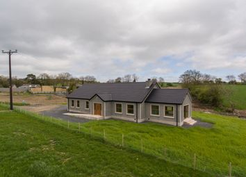 Thumbnail 3 bed bungalow for sale in Flough Road, Banbridge
