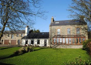 Thumbnail 4 bed detached house to rent in Earystane, Colby