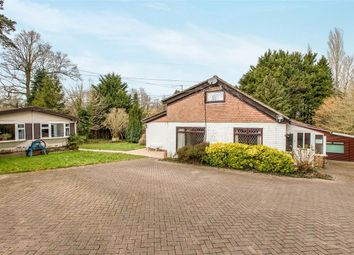Thumbnail 3 bed detached bungalow for sale in Common Lane, Titchfield, Fareham