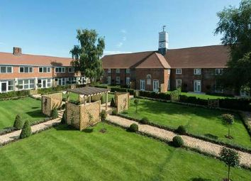 Thumbnail 3 bed property for sale in Froyle, Hampshire