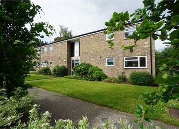 Thumbnail 1 bed flat to rent in Nelson Road, Colchester, Essex.