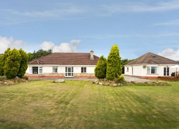 Thumbnail 3 bed detached bungalow for sale in Matt's Lane, Barntown, Wexford County, Leinster, Ireland