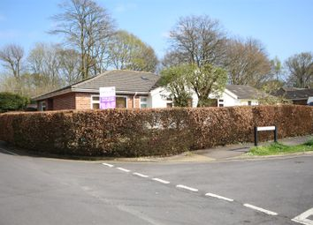 Thumbnail 4 bed semi-detached bungalow for sale in Burnside, Waterlooville