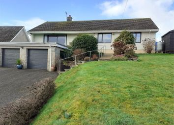 Thumbnail 4 bed bungalow for sale in Oneida, Chapel Road, Keeston, Haverfordwest
